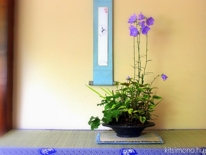 kitsimono kusamono display kijelzo tatami kakejiku honshi pot