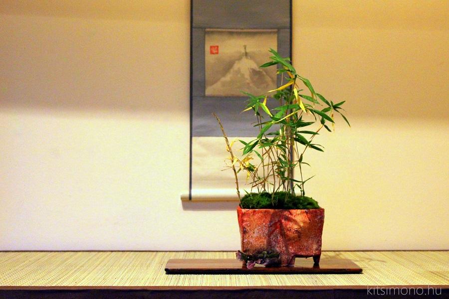 torpe bambusz bambus kusamono handmade bonsai talban pot kitsimono (2)